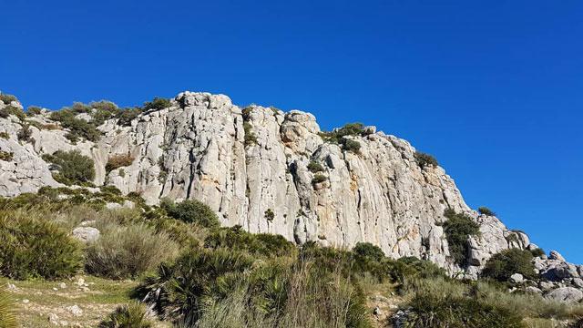 beginner climbing el chorro