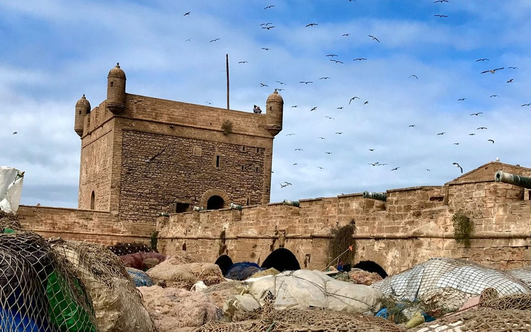 9 Things to do in Essaouira, Morocco